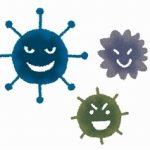 ハウスダストアレルギーの対策|埃が舞わない大掃除の基本